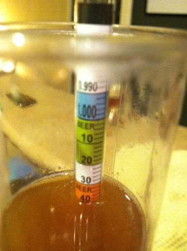Saison Original Gravity at 1.040