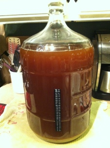 Saison Wort in the Carboy