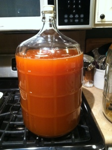 Saison racked to new carboy at 7 days.