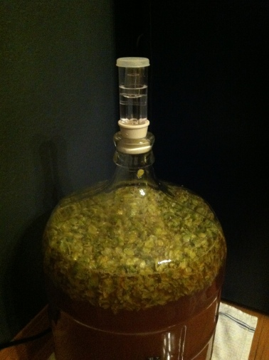 Two ounces of Cascade hops in the secondary fermenter.